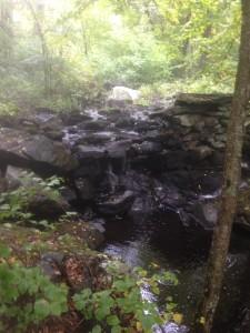 dam at Fever Brook
