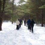 Snow Shoers searching for tracks on Rail Trailweb