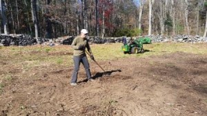 Linda raking the last clumps from the former brush pile area.