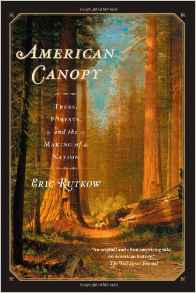 American canopy cover
