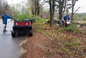 Becky and Bill picking up brush along Church Street during the Saturday workday at the Frohloff Farm.