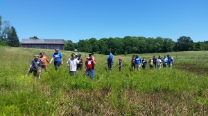 Walking through the meadow during summer camp.