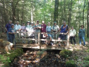 The group pausing for a picture on the footbridge over Nelson Brook.