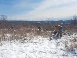 Lucas and Tom clearing the wall with a beautiful view over the Ware River valley towards Mount Wachusett.