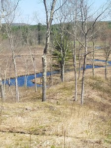 Muddy Brook curving through the valley