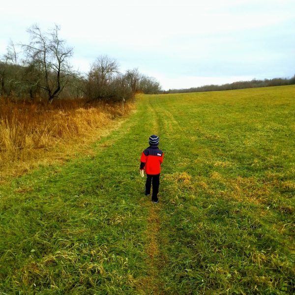 Category 9 - Human Interest. To the Trails taken by Brian White on November 2016 at Deer Park Preserve.