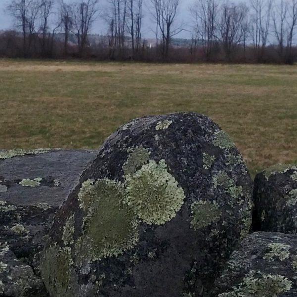 Category 2 - Landscape: I Spy a Steeple by Claudia Kadra, Mandell Hill, April 19, 2019