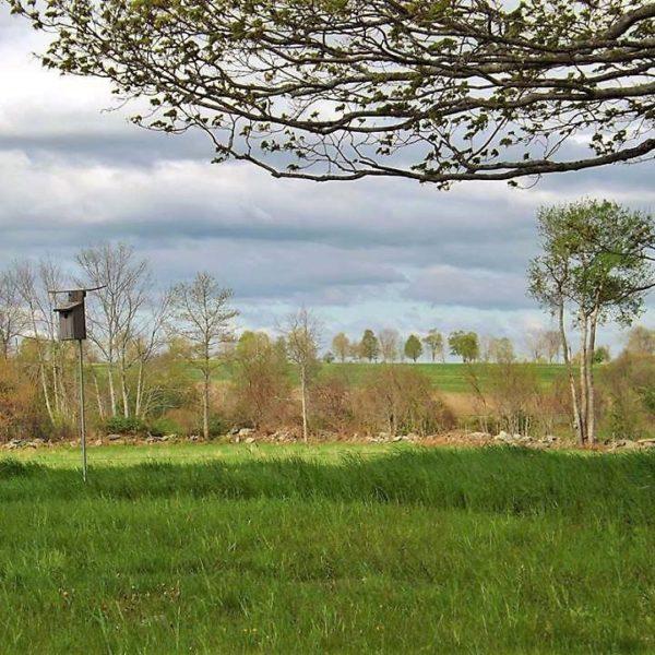 Category 2 - Landscape. Mandell Hill breezes, by Barbara Hanno taken in 2016.