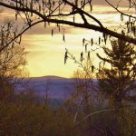 Mt Wachusett from Mandell Hill-Barbara Hanno
