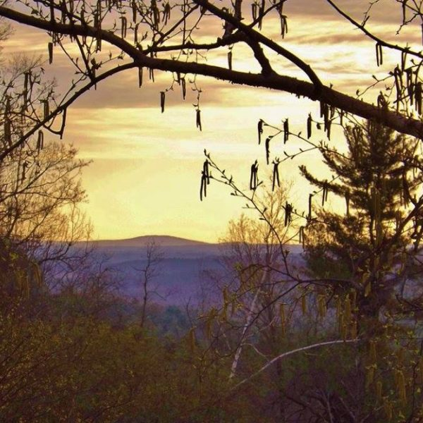 Category 2 - Landscape. Mount Wachusett taken by Barbara Hanno, early morning 2016 at Mandell Hill