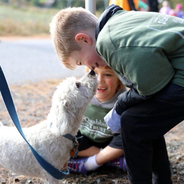 Category 9 - Human Interest. Nose to Nose, by Chris Komenda at the Mass Central Rail Trail, on October 13, 2018