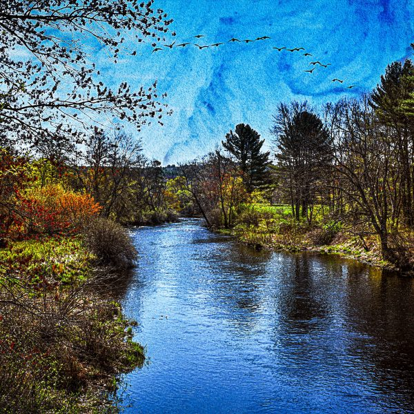 Category 8 - Water. Overlooking the Ware River, taken by Bob Desilets at Mass Central Rail Trail