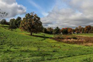 Wendemuth Meadow - North Brookfield