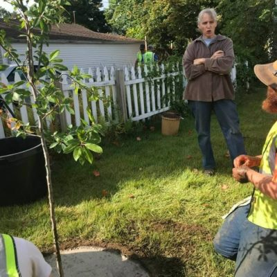 Cynthia and tree planters from the Greening the Gateway Cities Program in Holyoke. Here they are transplanting trees and creating a berm so there is space for water to soak into the ground around the new tree.
