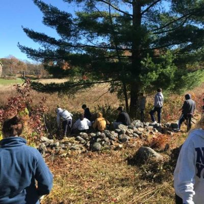 Work Day with Eagle Hill School students. We cleared brush from the stone walls. It was a happy beautiful day!