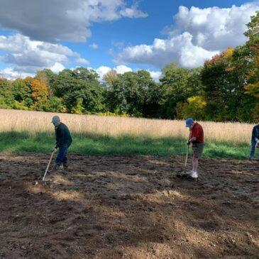 Preparing a Pollinator Meadow at Seven Acre Preserve