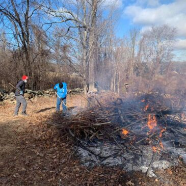 Brush Burning at Wendemuth Meadow
